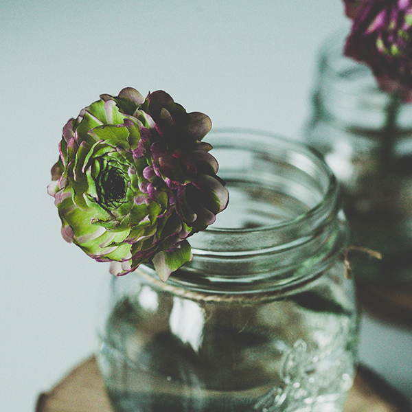 mason-jar-with-succulents