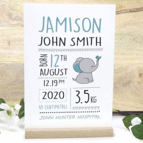 Personalised A4 Acrylic Baby Birth Printed Sign